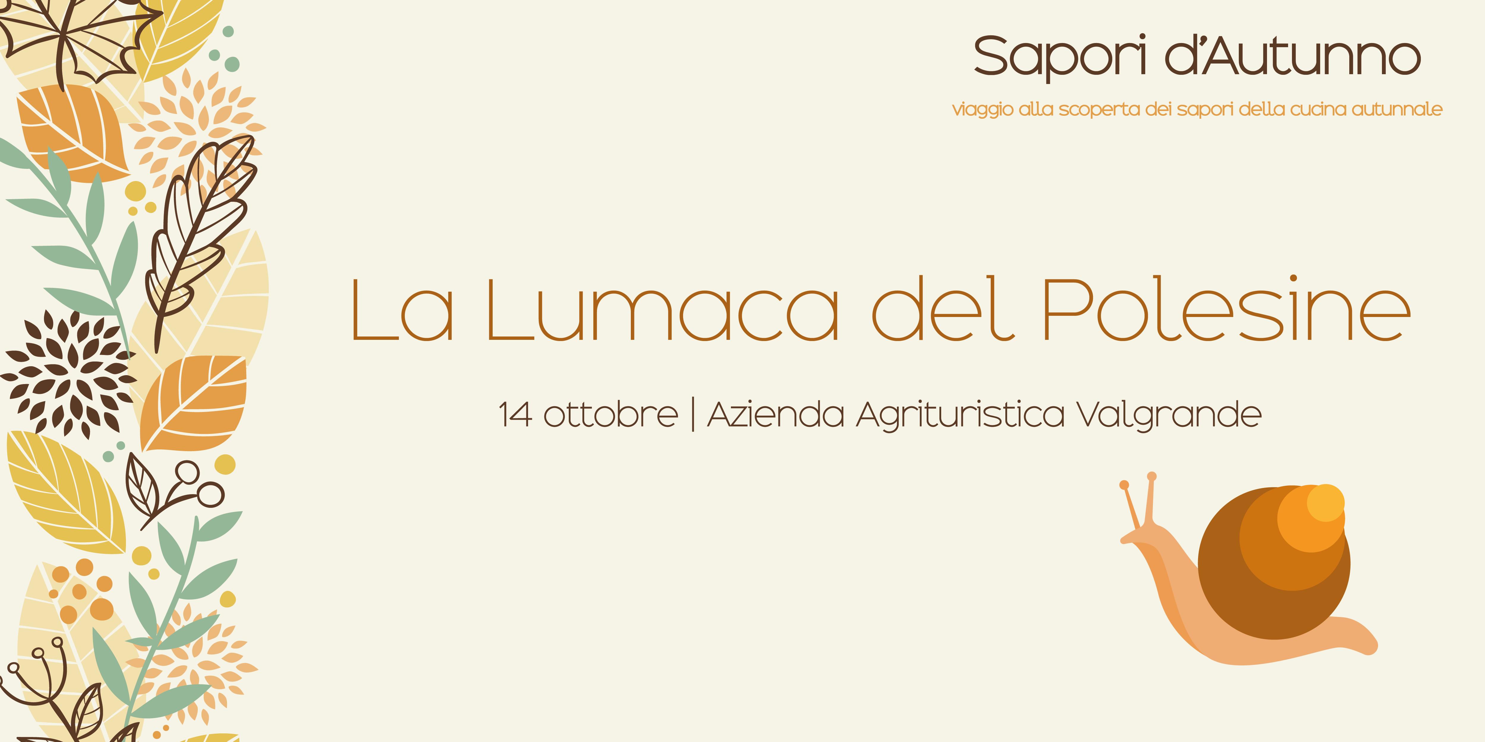 La Lumaca del Polesine – Sapori d'autunno